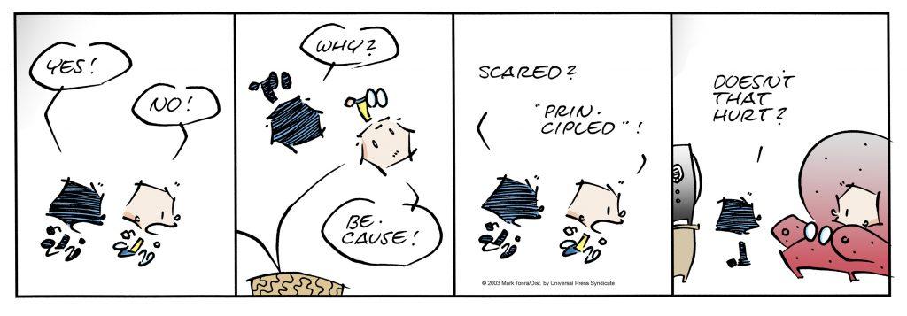 James Comic Strip by Mark Tonra